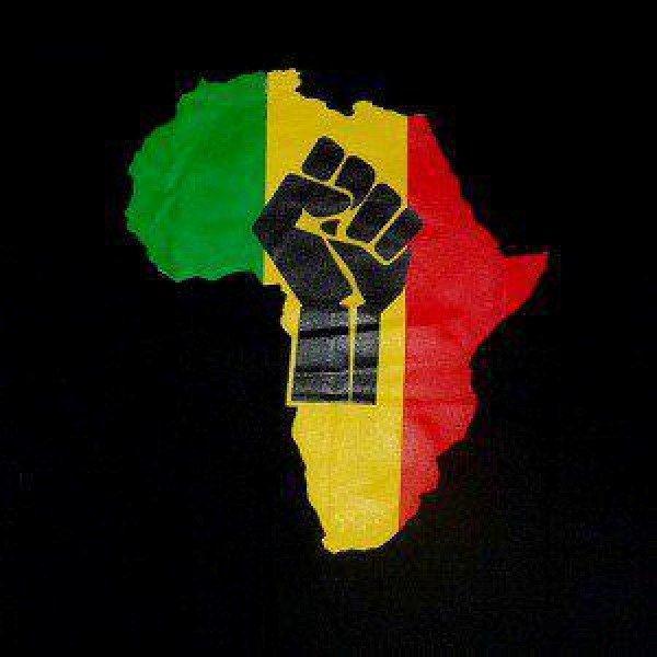 JOURNEE PANAFRICAINE DE SOLIDARITE AVEC LE PEUPLE TOGOLAIS A L'OCCASION DU 20ème ANNIVERSAIRE DE L'ASSASSINAT DE TAVIO AMORIN. dans Institut d'Etudes Panafricaines 427015_202569083174467_167015646729811_374236_905718622_n