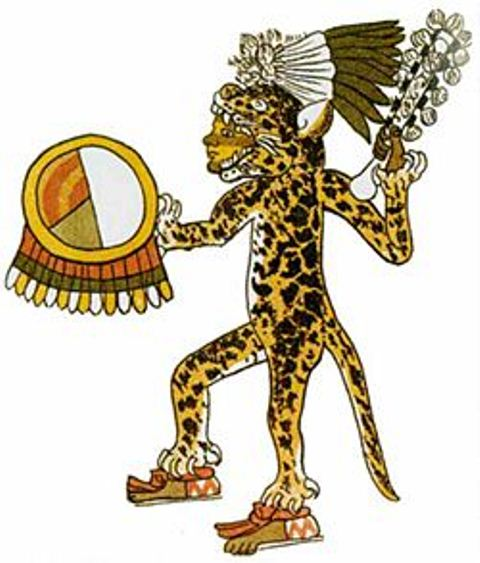 Jagaurwarrior